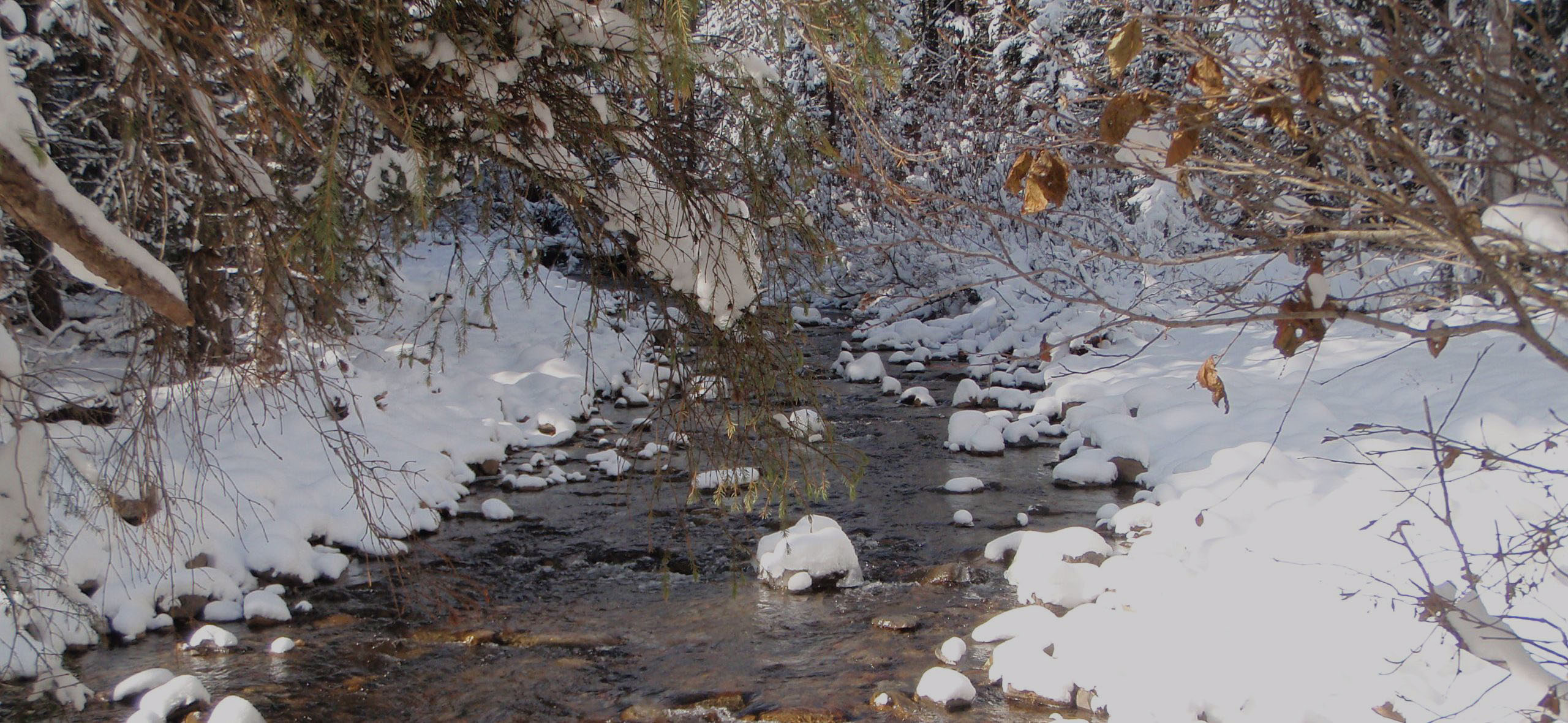 4-stream-with-snow1